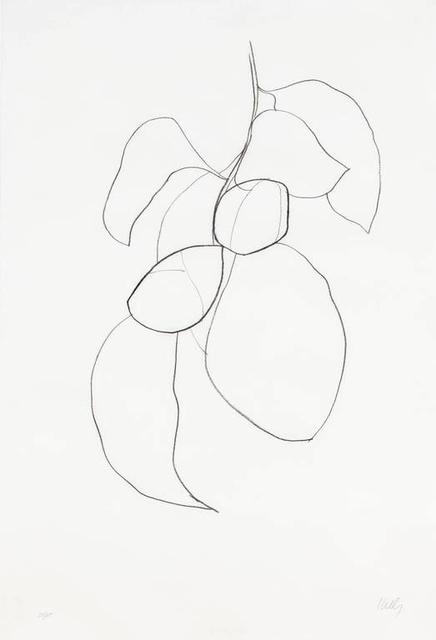 Ellsworth Kelly, 'Camellia III', 1964-1965, Brooke Alexander, Inc.