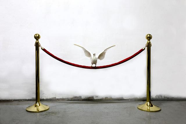 , 'Untitled (Dove),' 2017, Galerie Paris-Beijing