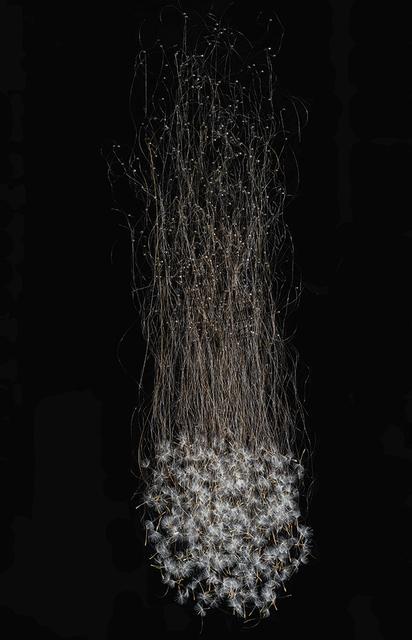 , 'Suspended,' 2016, Garvey | Simon