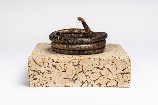, 'Drought,' 2018, Bruce Lurie Gallery