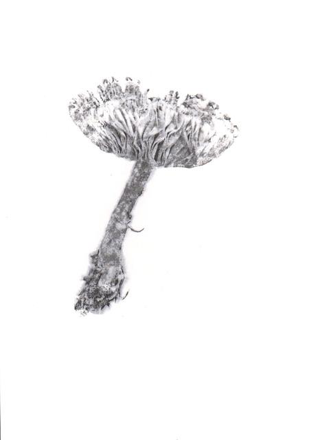 , 'Shroom,' 2017, Fernando Luis Alvarez Gallery