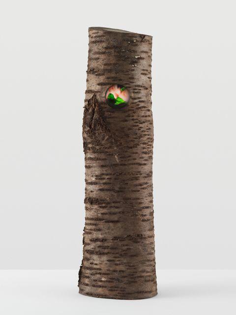 Pipilotti Rist, 'Iris Log Big Cherry (Iris Ruggel grosse Kirsche)', 2014, Hauser & Wirth