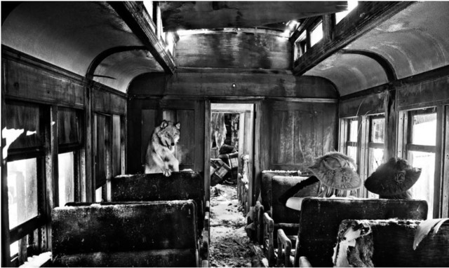 David Yarrow, 'Ride the Ghost Train', Photography, Visions West Contemporary
