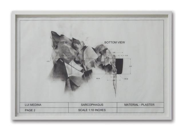 , 'Untitled (Natural History 6),' 2013, Artinformal