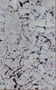 , 'Nudos XV,' 2018, Terreno Baldío