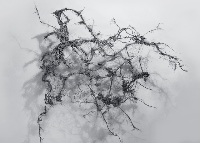 Dmitry Kawarga, 'The Title Doesn't Matter #6', 2015, Savina Gallery