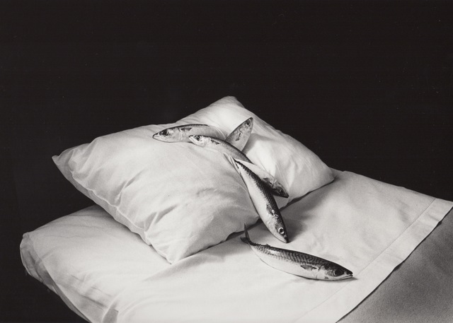Michiko Kon (今 道子), 'Mackerel & Pillow', 1979, Robert Mann Gallery