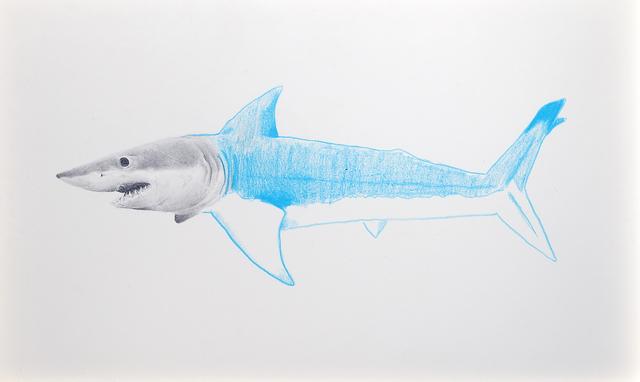 , 'Tiburón azul,' 2016, Galerie C.O.A
