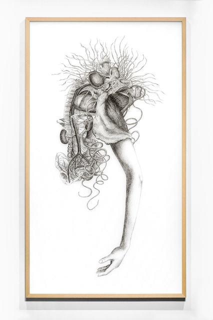 , 'Rosy Nobody No.1,' 2017, Blindspot Gallery