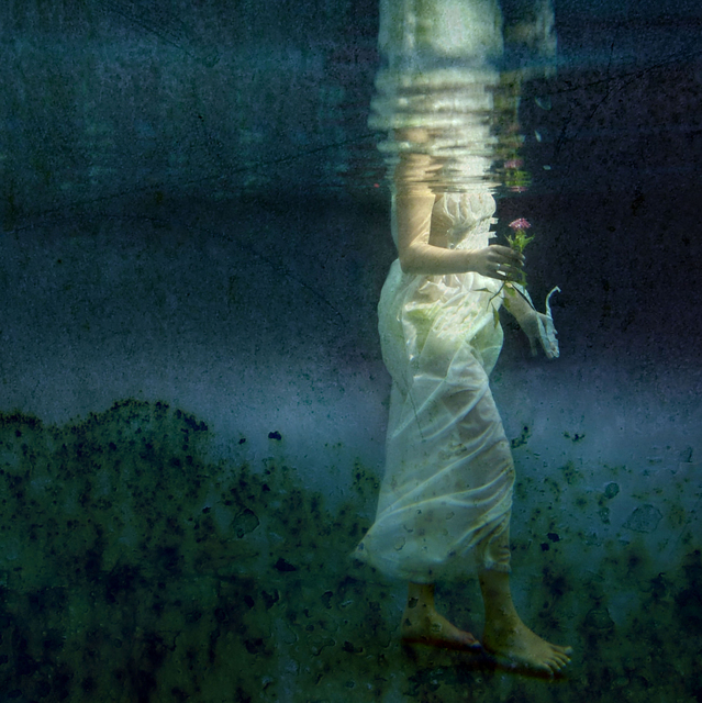 Kathleen Wilke, 'Gift', 2013, Photography, C Print on Fuji Pearl, Perspex mounted, DECORAZONgallery