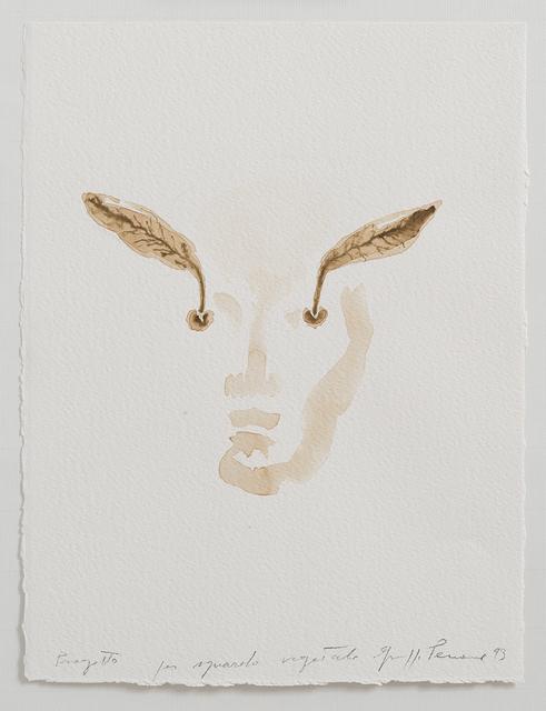 , 'Progetto per sguardo vegetale,' 1993, Repetto Gallery