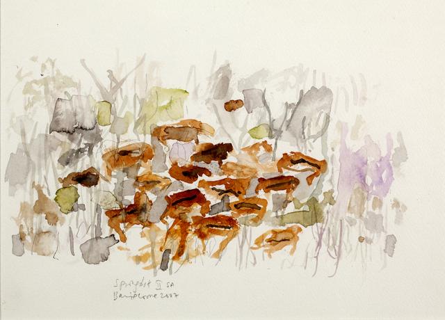 , 'Springbok II SA,' 2007, Oliver Sears Gallery