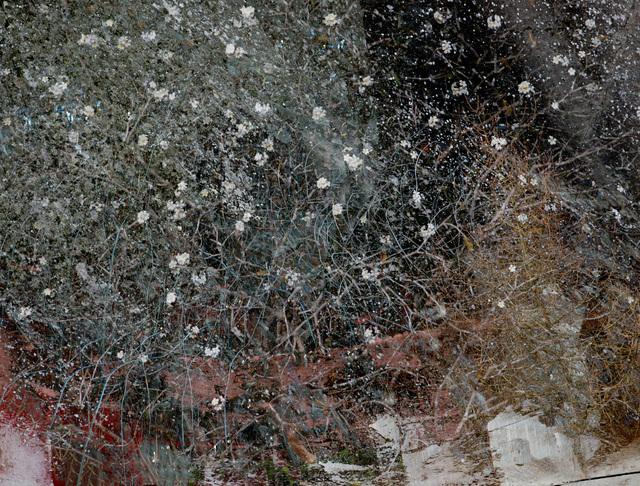 Valda Bailey, 'I Heard 1000 Blended Notes I', 2012-2019, Sohn Fine Art