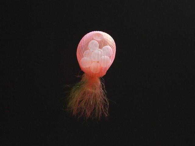 , 'Jellyfish 6,' 2020, Micheko Galerie
