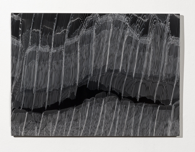 , 'Baleen,' 2017, Duane Reed Gallery
