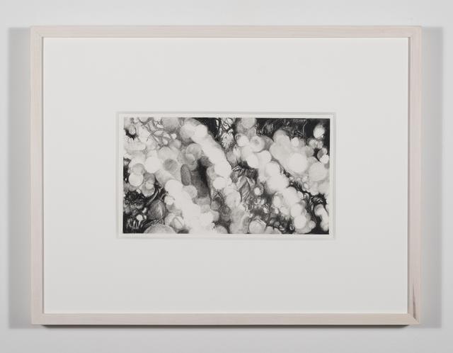 , 'Slowspin Frame 00:44,' 2017, Lesley Heller Gallery