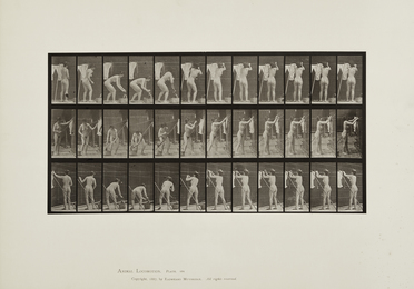 Plates 58, 81 and 434 from 'Animal Locomotion'