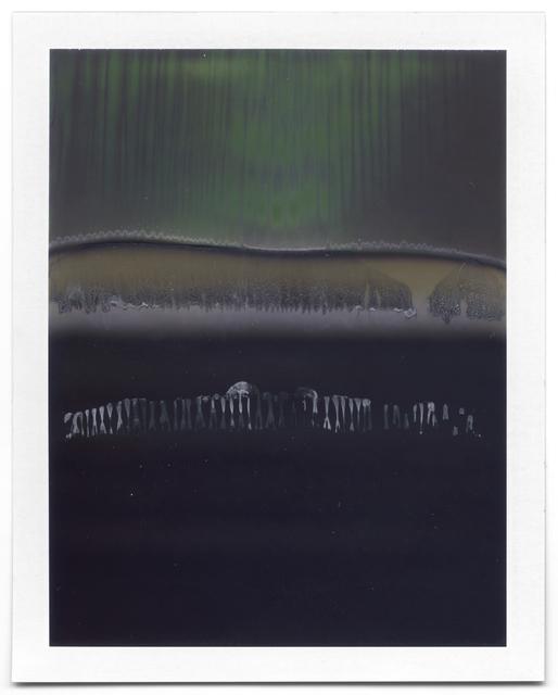 , 'Untiled (Landscape #74),' 2008-2014, Flowers