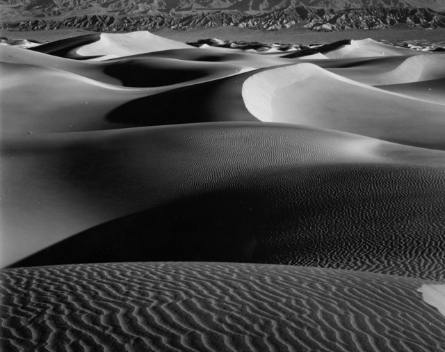 Brett Weston, 'Dune', ca. 1960, Photography, Vintage silver gelatin contact print, Michael Hoppen Gallery
