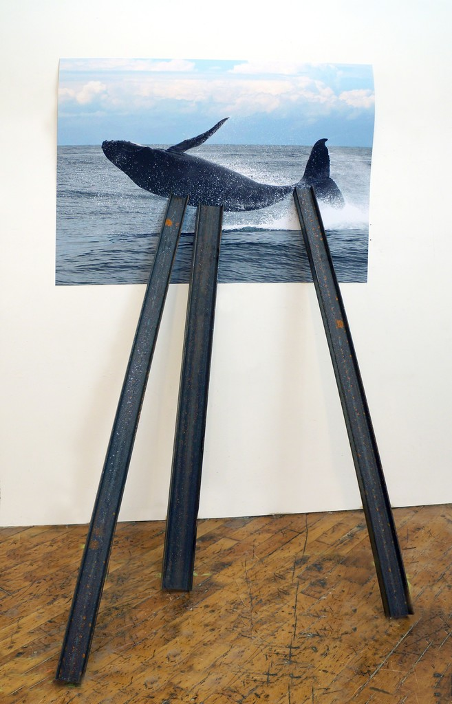 David Brooks, 'Entangled Image (Humpback whale),' 2013, American Contemporary