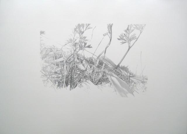 , 'Lieux de Mémoires, 34.000 Jahre Grasnarbe. Siedlung des Aurinacien, Schöpfung figürlicher Kunst, 31.990 v.Chr.,Hohle Fels, Blaubeuren, Deutschland,' 2010, Zilberman Gallery
