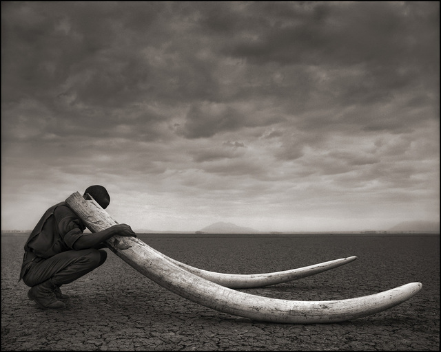 , 'Ranger with Tusks of Killed Elephant, Amboseli ,' 2011, Atlas Gallery
