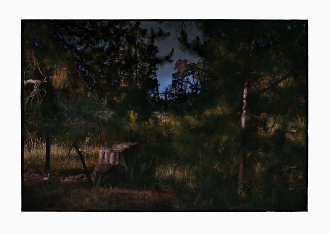, 'Untitled CL GW SH5 N16,' 2018-2019, Tolarno Galleries