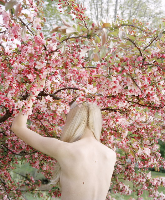 , 'Raising the Cherry Tree,' 2016, Huxley-Parlour