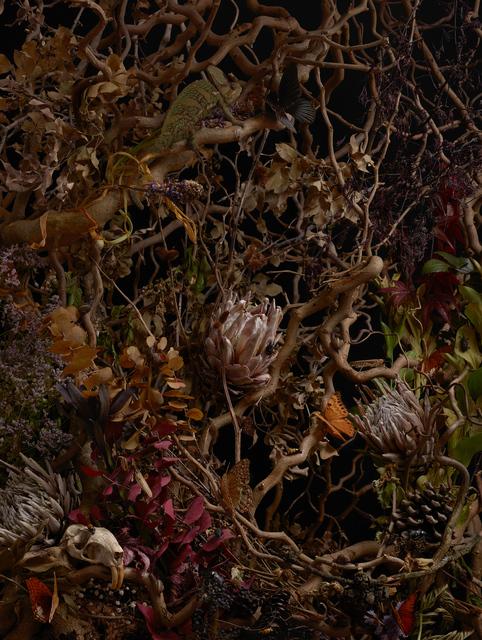 , 'Nameless Flower #5,' 2014, Galerie Isabelle Lesmeister
