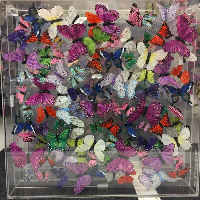 , 'Butterflies,' 2019, Tanya Baxter Contemporary