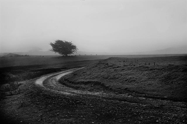 , 'Big Sur,' 1975-2015, Robert Berman Gallery