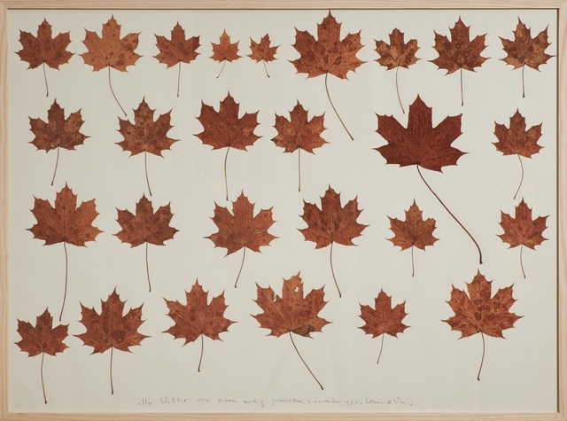 , 'all leaves from one branch,' 1975, Cortesi Gallery