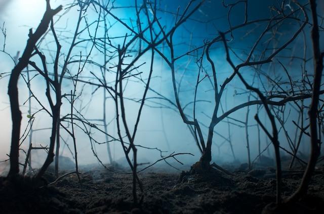 , 'Cubiertos por una capa de nubes,' 2012, Knoerle & Baettig Contemporary