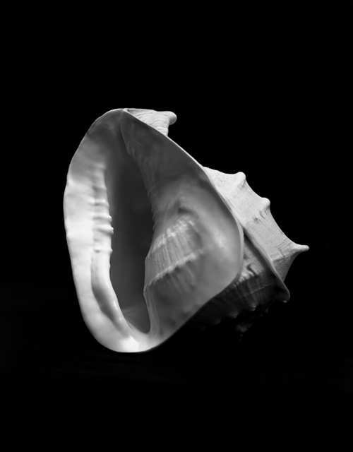 Esther Teichmann, 'Untitled', 2015, Photography, Silver gelatin fibre based print, Galerie Les filles du calvaire