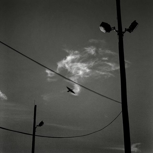 , '情緒地景-電線、鳥與雲 Seeing and Construction-Wire, Bird and Cloud,' 1999, POCKET FINE ARTS