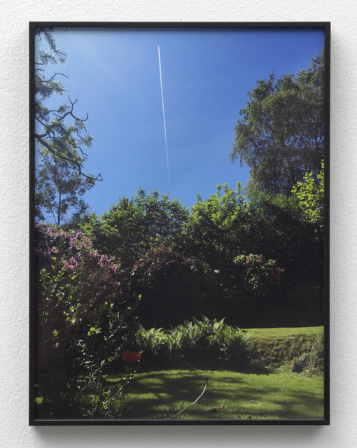 Juliette Blightman, '1st June - Garden, Farnham (with Plane)', 2018, Photography, Photograph, archival pigment print on Ilford Gold Fibre Silk, frame, Galerie Fons Welters