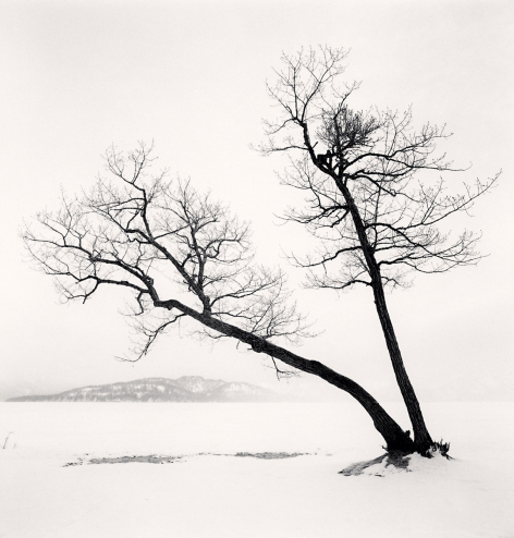 Michael Kenna, 'Two Leaning Trees, Hussharo Lake, Hokkaido, Japan', 2013, Photography, Gelatin Silver Print, Weston Gallery