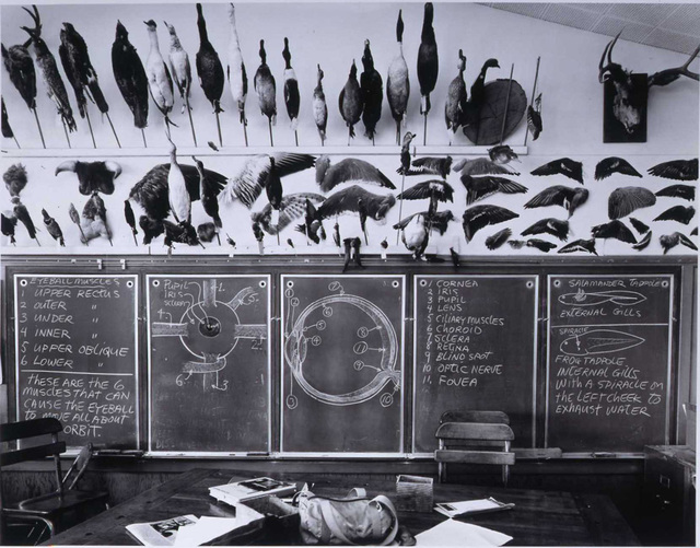 Catherine Wagner, '7th & 8th Grade Science Classroom, Moss Landing Elementary School', 1984, di Rosa