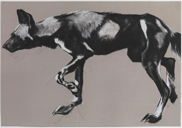 , '29. Wild Dog on Grey II,' , Sladmore