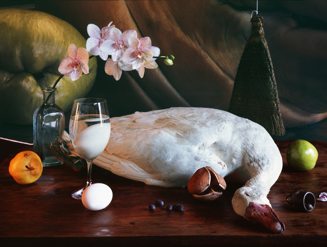 Vera Mercer, 'White Goose', 2009, Galerie Jordanow