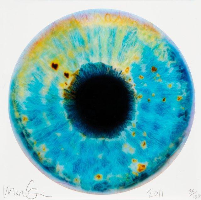 Marc Quinn, 'Iris', 2011, Heritage Auctions