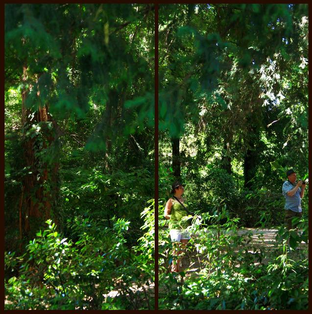 , 'Da série Cristalização da Paisagem, Veneza, Agosto de 2009 [From the series Landscape Crystallization, Venice, August 2009],' 2009, Casa Triângulo