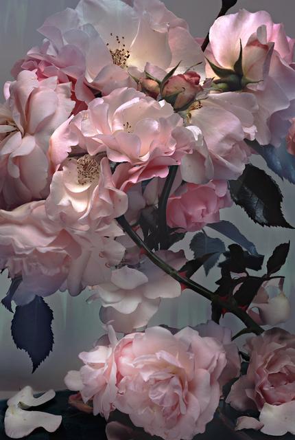 , 'Rose,' 2008, CHRISTOPHE GUYE GALERIE