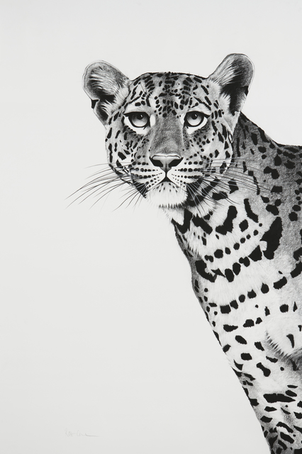 , '16. Leopard Peering,' 2018, Sladmore Contemporary