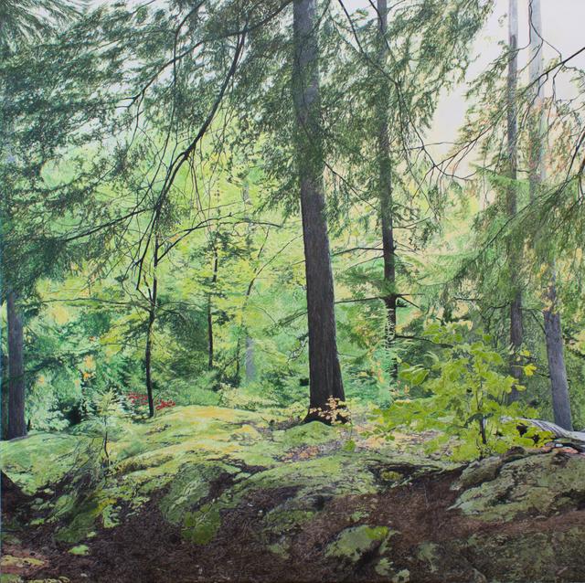 , 'À travers les branches (Parc des Chutes Dorwin, Rawdon, Québec),' 2019, Galerie D'Este