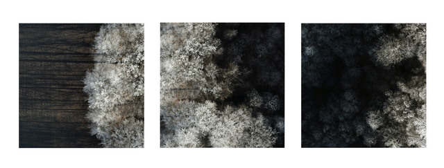 Kacper Kowalski, 'Untitled (Winter Trees Triptych)', 2017-2018, Photography, Archival pigment prints, Galerie XII