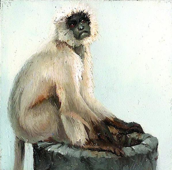 , 'Gray Langur I,' , Sirona Fine Art