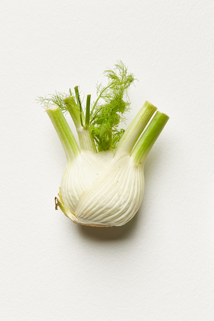 , 'Fennel (Kitchen Pieces),' 2011-2016, i8 Gallery