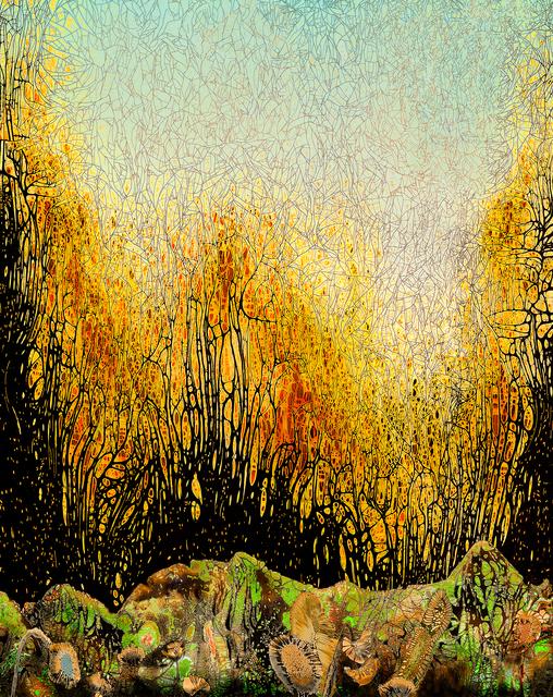 Nolan Preece, 'Fall at Moss Creek', 2019, Walter Wickiser Gallery