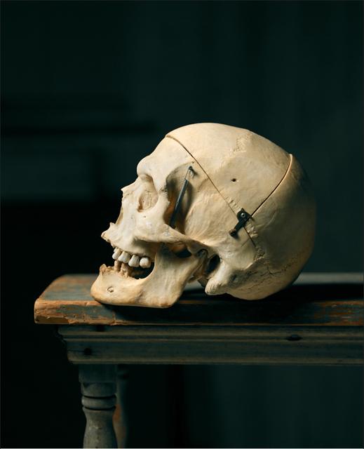 , 'Del Close's Skull,' , Chicago Art Source